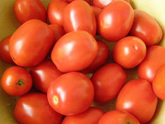 Турецкие помидоры. Иногда они возвращаются...