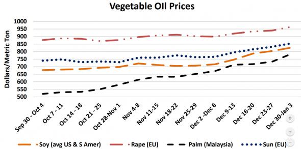 Пальмовое масло дорожает. Подсолнухи встрепенулись!