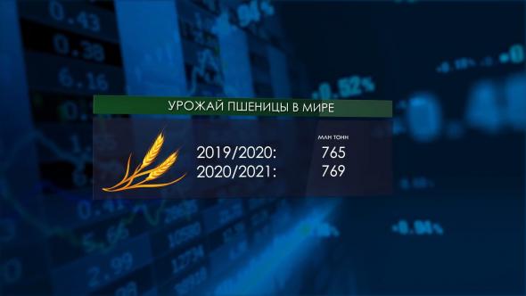 Россия - пшеничный тяжеловес | Дорогая гречка | В Крыму растут надои