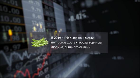 Россия обогнала Украину по подсолнухам