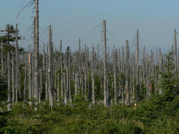 Экологические проблемы сжигания водорода