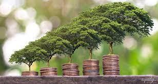 Четыре принципа успешных инвестиций. Инвестируйте а не спекулируйте.