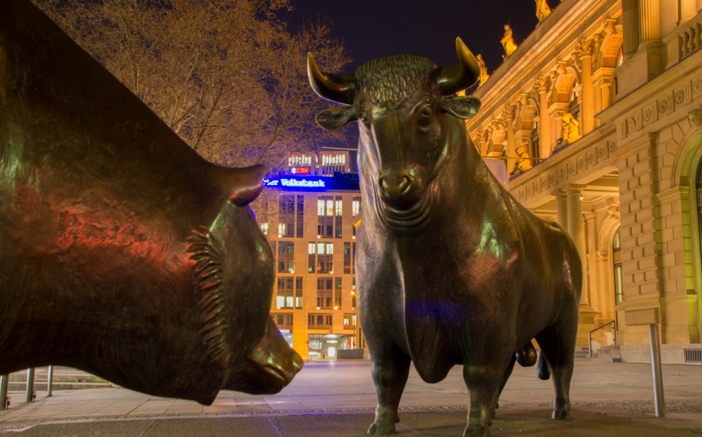 Фото быков и медведей