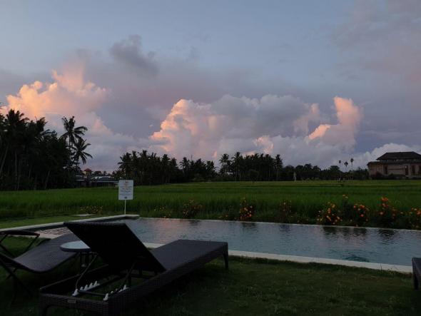 Впечатления от трейдинга на острове Бали