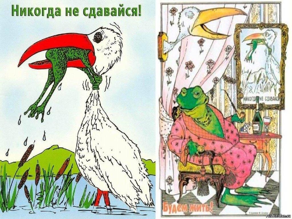 картинка никогда не сдавайся с лягушкой и аистом такие места довольно