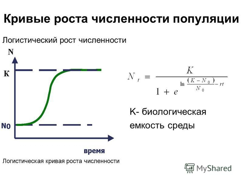 Форекс логистическая кривая прогнозы валютного форекс forex