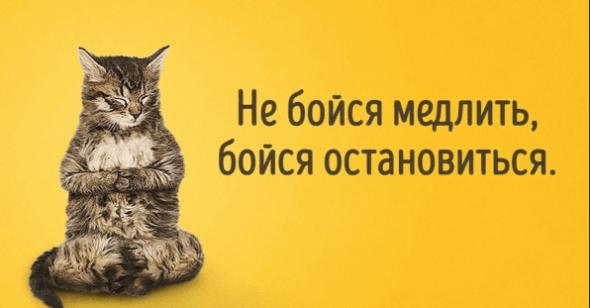 "Газпром... ""Было бы море, а корабли будут"""