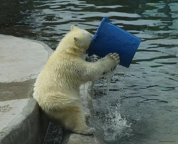 Пузырим воду...
