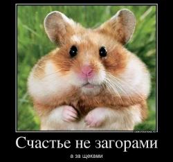 Кто вы на рынке:Бык,Медведь или Свинья?и как Не стать Овцой!..психотипы-наблюдения..(дополнила)