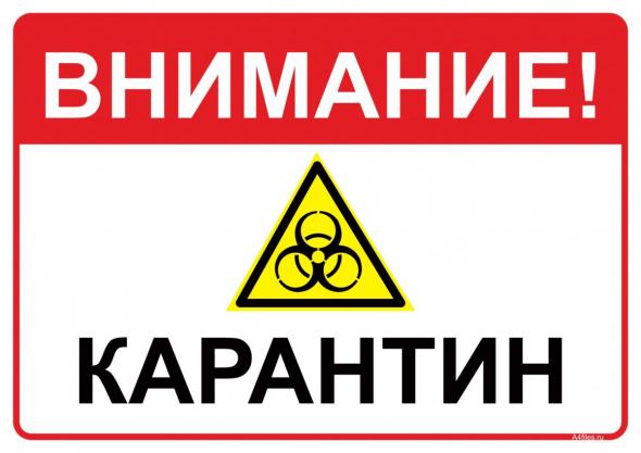 Россия. Выход из самоизоляции.