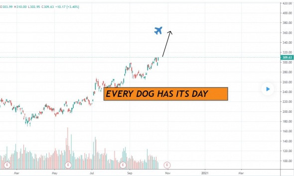 ALIBABA-EVERY DOG HAS ITS DAY